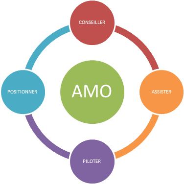 AMO - Assistance à Maîtrise d'ouvrage (AMO)